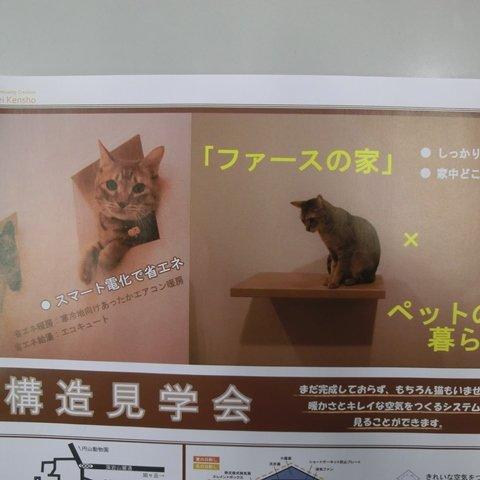 「ファースの家」×「ペットのいる暮らし」  構造見学会
